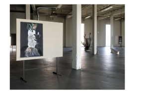 mannaerts_an_exhibition_spread17